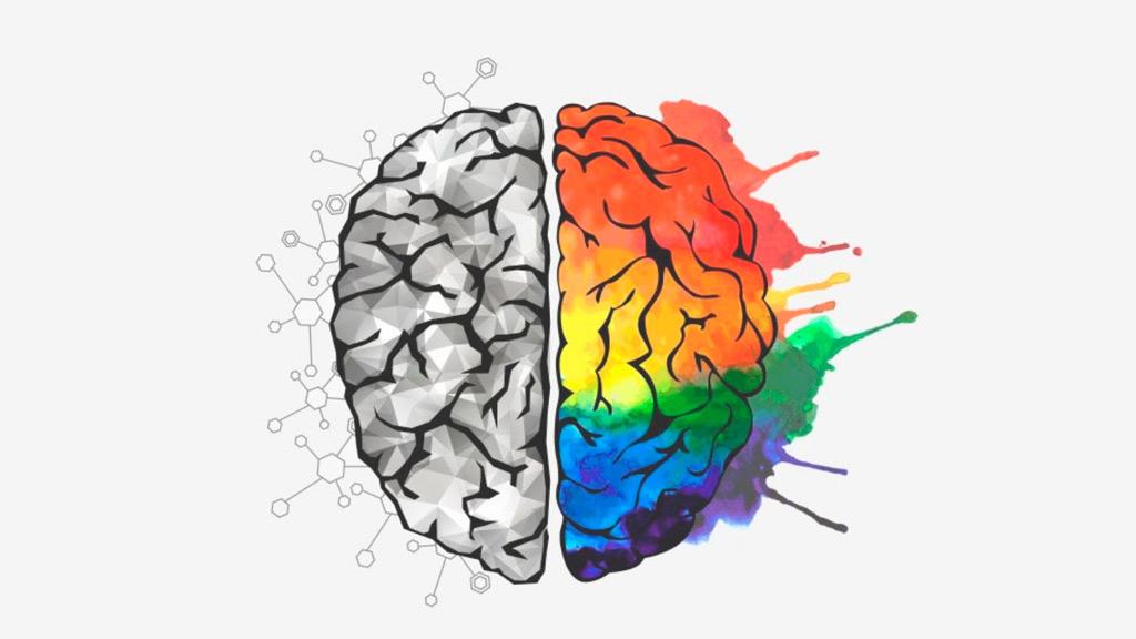 просветительский проект лекция об эволюции мозга
