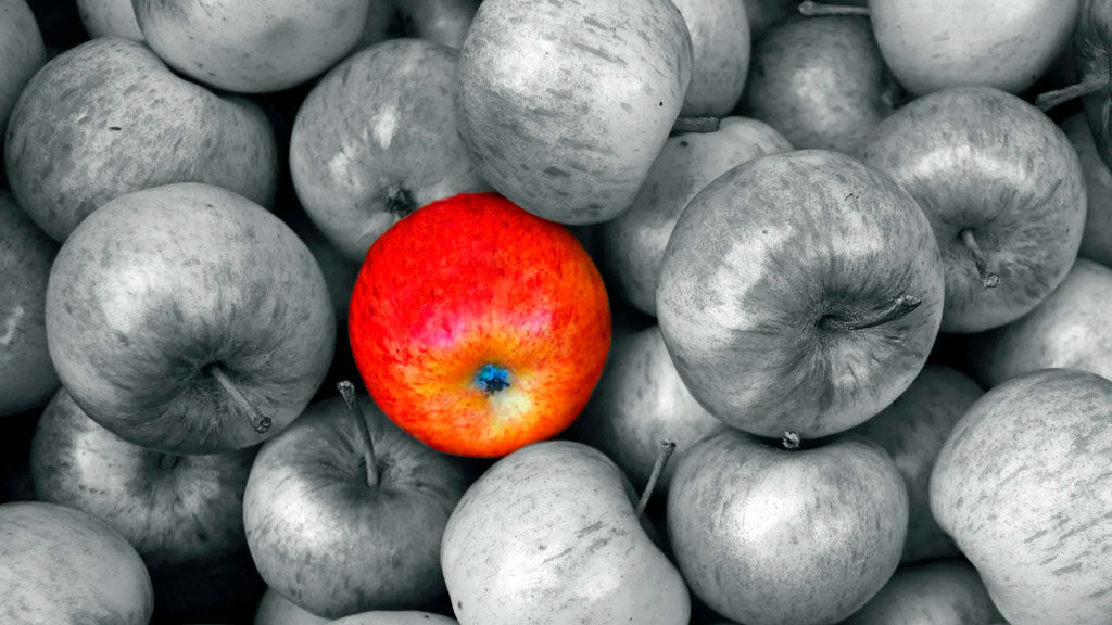искусственный интеллект хранения яблок