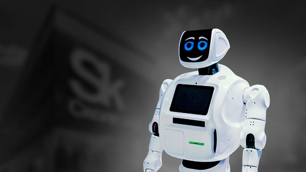 В школах Пермского края появятся классы по изучению сервисных роботов